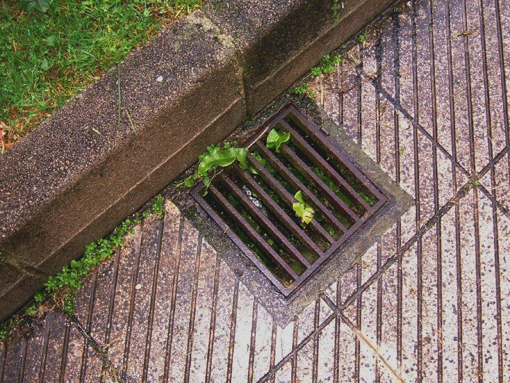 drain blockage